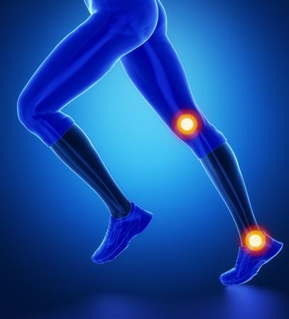 corpo umano: Caviglia ginocchio scansione