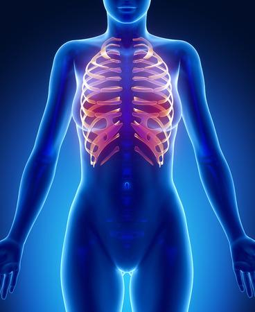 collarbone: RIBS  blue x--ray bone scan