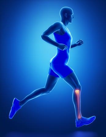 ligament: TIBIA - running man leg scan in blue
