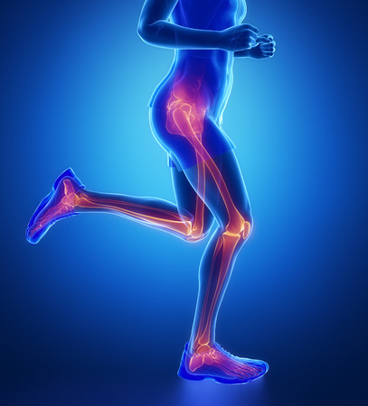 knee: Knee, hip, ankle - running man leg scan in blue