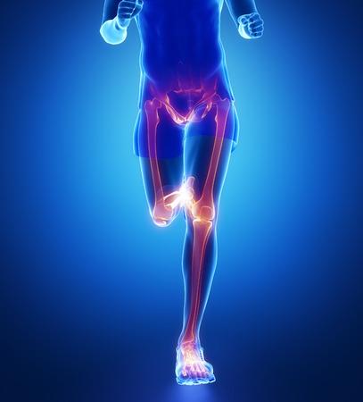 human bones: La rodilla, la cadera, el tobillo - exploración pierna corriendo hombre de azul Foto de archivo