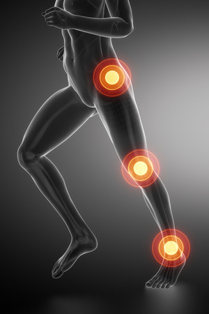 talus: Joint knee, hip and ankle - running man leg scan in blue Stock Photo