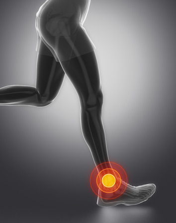 Focused on ankle joint Stock Photo