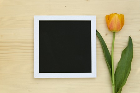 romantic picture: Yellow Tulip with blank black chalkboard picture frame on a light wooden background. romantic picture top view. Stock Photo