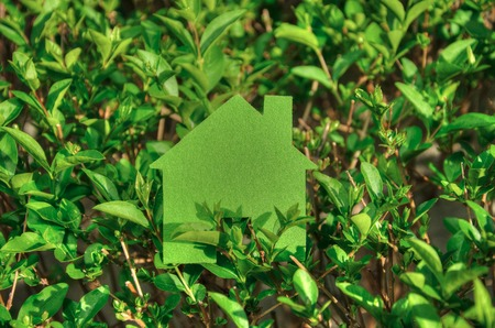 economize: Eco house concept in a green plants ,  green eco house icon in nature