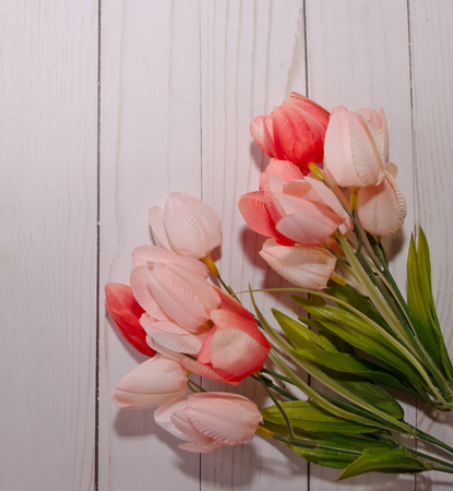 Colorful tulips bunched together with a white wooden fence background 版權商用圖片