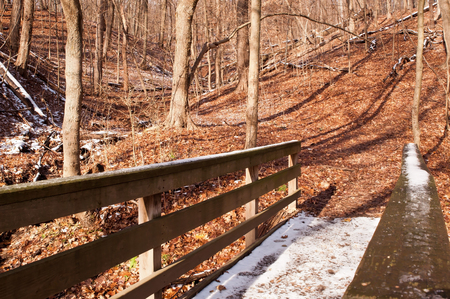 A wooden bridge with snow on it in the bare winter woods in Frick Park, Pittsburgh, Pennsylvania, USA 免版税图像
