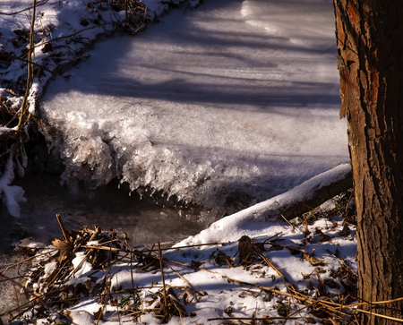 A small frozen waterfall with shadows of trees upon it in winter in the woods