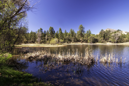 The Granite Basin lake at the Granite Basin Recreation Area in Prescott, Arizona, USA on a bright spring day under blue skies