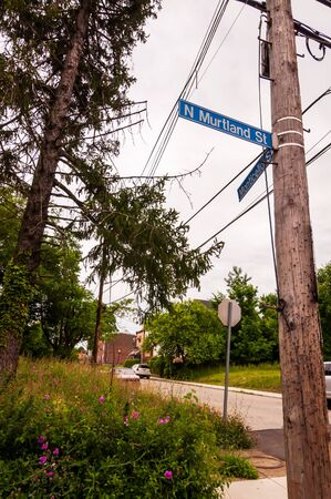 Pittsburgh, Pennsylvania, USA 06/15/2019 The telephone pole and street signs for the corner of North Murtland and Monticello Streets in the Homewood neighborhood