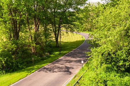 A paved road through the woods in Warren County, Pennsylvania, USA on a sunny spring day 版權商用圖片