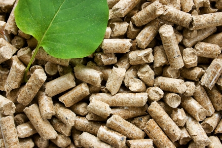 Pile of wood pellets with a green leaf Stock Photo