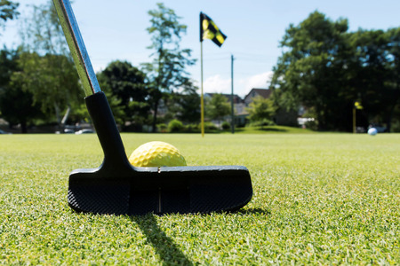 A black putter is about to hit a yellow ball on a practice green with black and yellow flags marking the holes Stock Photo