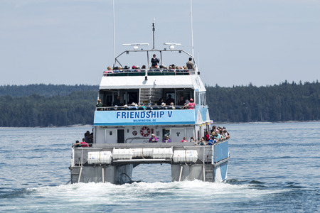 Bar Harbor, Maine, USA – 28 July 2017: The Friendship V catamaran, of the Bar Harbor Whale Watch Company, leaving the docks with passengers on a whale watching tour.