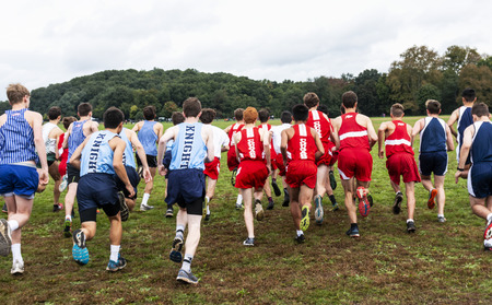 Bronx, New York, USA - 13 October 2018: A high school boys cross country race as it starts on the grass heading to the trees and hills at VanCortlandt Park NYC.