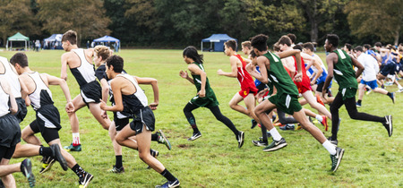 Bronx, New York, USA - 13 October 2018: High school boys cross country race start in VanCortladt Park in the Bronx.
