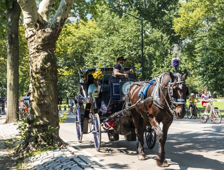 Central Park, New York, USA - 15 August 2018: Summertime in New York City with tourists going for a ride in a horse and buggy in central park.