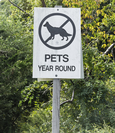 A wwoden sign is posted  in a park that reads no pets allowed year round. Banque d'images - 125225790