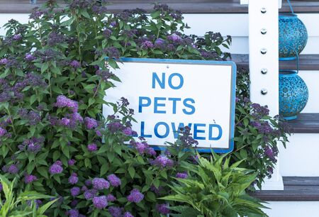 A sign that says no pets allowed is in a garden in fron of a porch with blue letters. Banque d'images - 125328152