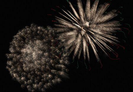 Two large white sparkling firewoks shimmering in the dark night sky.