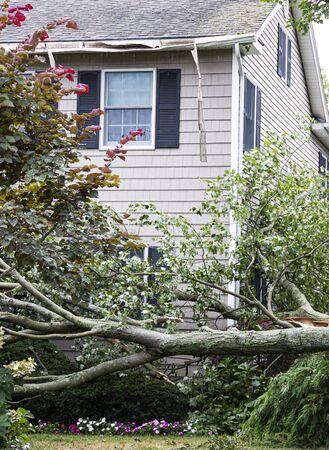 Een boom raakt het dak van een huis en valt er tijdens een zomerstorm van op de grond.