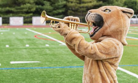 A cougar mascot standing sideways pretending to play a trumpet with the athletic field in the background. Stock Photo