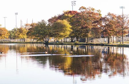 Trees around Argyle Lake in Babylon village are very colorful as Autumn turns the leaves colors and they reflect in the water as the sun rises on an October morning.