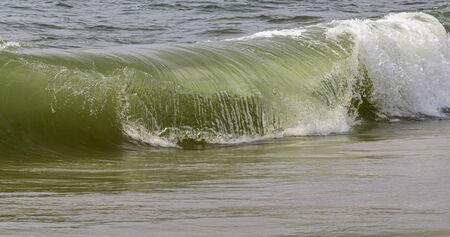 A normal Atlantic Ocean wave is collapsing on itself along the shore of the beach.