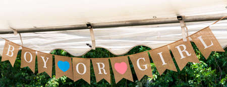 Decorative flags hanging from a backyard tent during a gender reveal baby party.