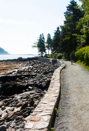 Walking path in Bar Harbor Maine along the water at low tide. Imagens