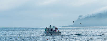 Bar Harbor, Maine, USA - 28 July 2017: Fishermen pulling up lobster traps and sorting their catch on their boat on a foggy morning with porcupine island covered in the fog. Imagens - 153305555