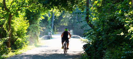 Man riding his bike from the shade in to the sun on a trail in the woods surrounded by trees. Imagens