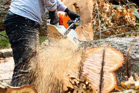 A landscaper using a chainsaw to cut up a tree that fell during tropical storm Isaias on Long Island New York. Imagens - 153993894