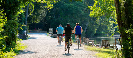 Rear view of three men on bicycles riding on a dirt path in the woods passing benches, lake and geese on a sunny day.