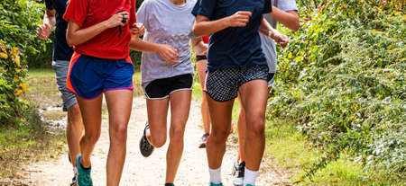 A group of high school girls are runnng together on a dirt path in a park during cross country practice. Imagens