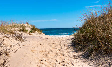 View of the Atlantic Ocean looking through a sand dune at Montauk Beach with footprints in the center and beach grass on the sides.
