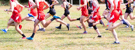 Side view of the start of a boys cross country 5K race on grass as they sprint for position.