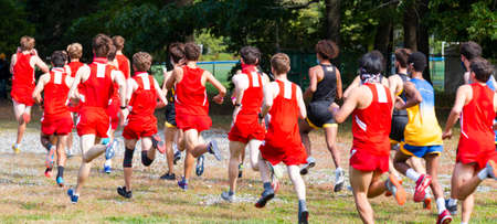 Rear view of the start of a high school boys cross country race on a grass field. 版權商用圖片