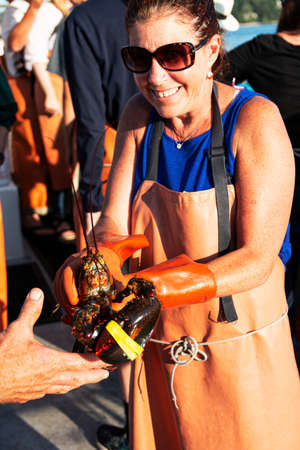 Portland, Maine, USA - 24 July 2019: A female tourist on a loster boat tour is holding a live Maine lobster in her hands. 新聞圖片