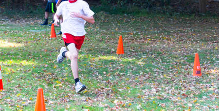 A high school boy cross country runner is racing on a grass path covered with autumn leaves between orange construction cones that are marking the cousrse.