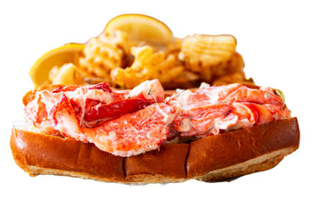 One fresh Maine lobster roll on a what background with waffle fries behind it.