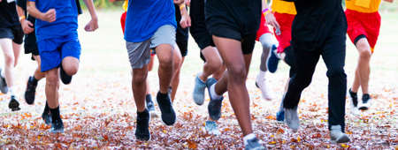 High school freshmen cross country runners running a race in autumn with leaves on the ground. Stok Fotoğraf