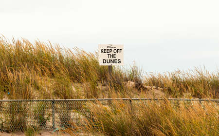 A sign warning people to please keep off the dunes at the beach at Robert Moses State Park surrounded by fall colored grass. 版權商用圖片