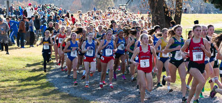Wappingers Falls, New York, USA - 23 November 2019: Over 200 high school girls the first four hundred meters into a cross country race on the Bowdoin Park 5K course upsate New York.