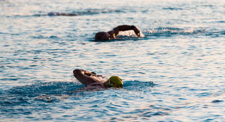 Three swimmers in a pool with selective focused used on one and the two others appering to be blurry while training in the early morning for a triathlon. Imagens