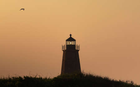 The point Judith Lighthouse with an orange background at sunrise with a seagull flying above in Late June 2021. Stockfoto