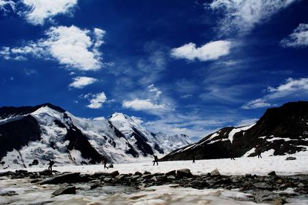 aletsch: the Aletsch Glacier