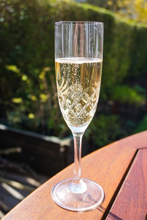 champagne flute: Champagne flute on wooden outdoor table in a summery shot