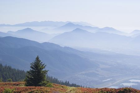 mala fatra: Views of Tatra mountain peaks from Mala Fatra