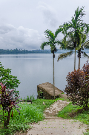 crater lake: Concrete jetty, pathway and palms overlooking Barombi Mbo crater lake in Cameroon, Africa Stock Photo